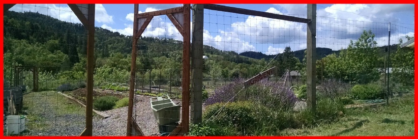 Phoenix Charter School Learning Garden. Roseburg, OR